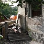 teilweise abgerissener Grüner Baum in Klingenthal