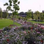 Blumenbeete Reichenbach