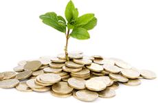 Geldbaum von Bonus-Community