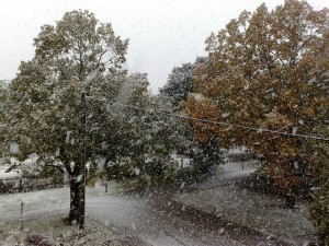 erster Schnee in Grünbach - Herbst / Winter 2009