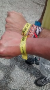 Rock im Park 2014 - Festivalband