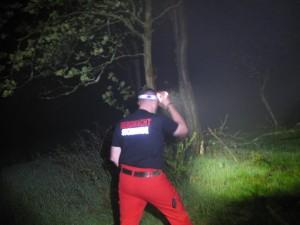 SEO 7R Testbild im Wald