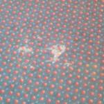 Teppich mit Kotzfleck