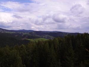 Blick von Vogtland Arena in den Wald