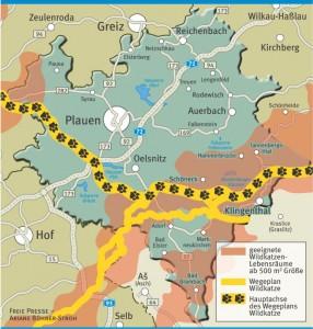 Wildkatzen-Ausbreitung im Vogtland