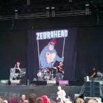 Zebrahead live beim Highfield 2011